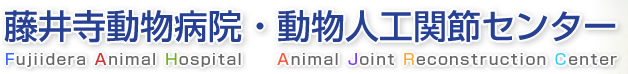 藤井寺動物病院 -Fujiidera Animal Hospital- | 動物人工関節センター -Animal Joint Reconstruction Center -